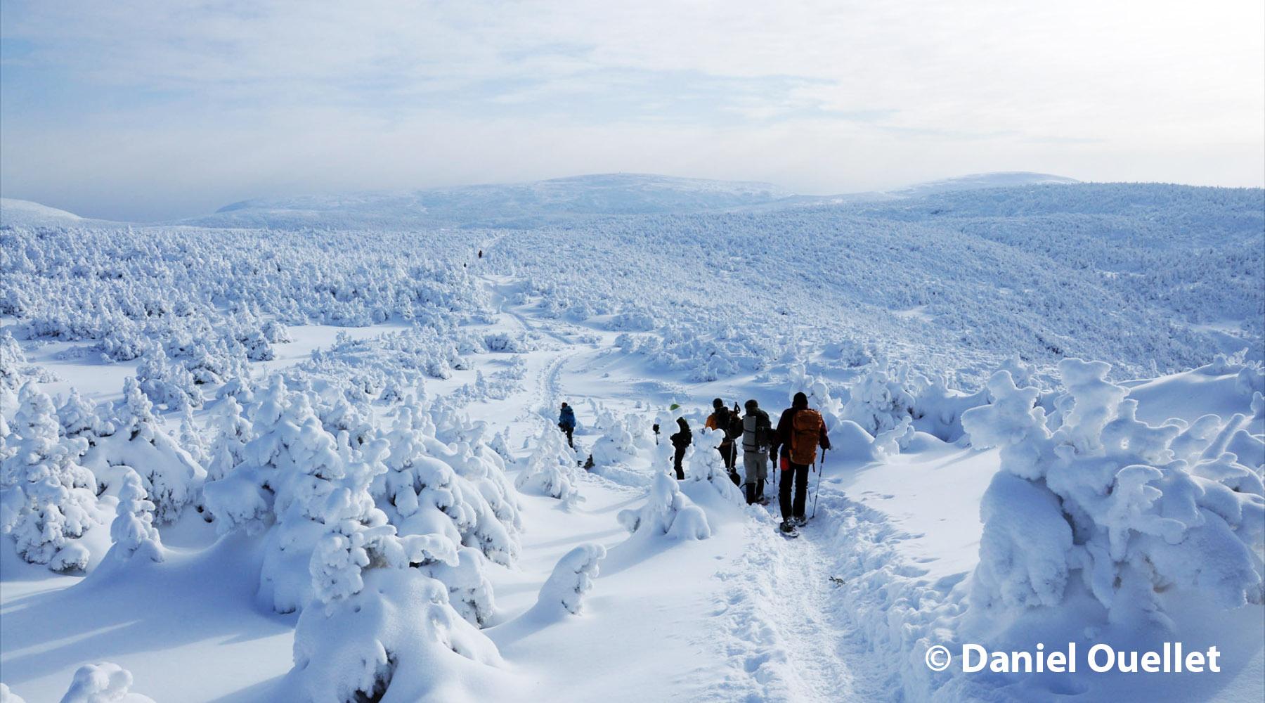 randonnée pédestre, rquette, babiches, chic-chocs, neige, rando hivernale