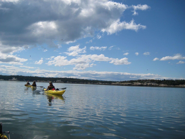 meilleur kayak de mer