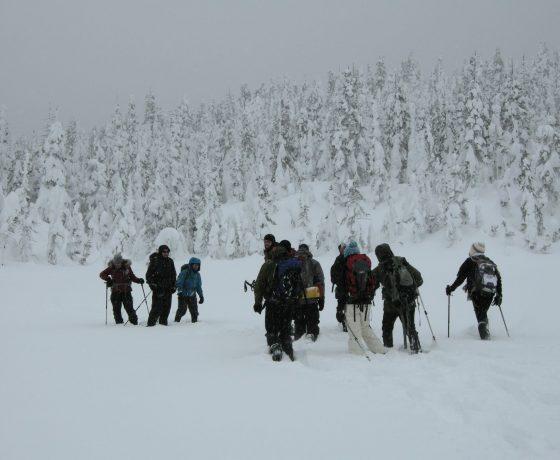 difference entre ski de fond et ski nordique