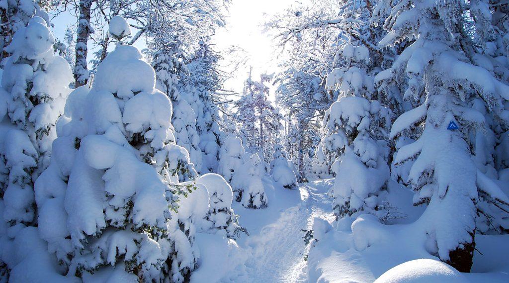 meilleures destinations raquette - raquette qu Québec - parc mégantic - mégantic en raquette - mégantic en hiver