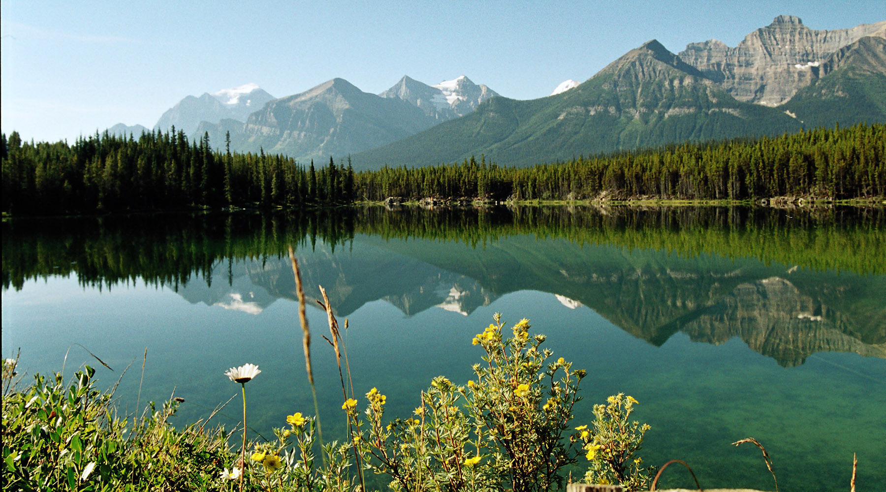 Rocheuses canadienne, Chinook voyages, aventure, randonnée, ouest canadien