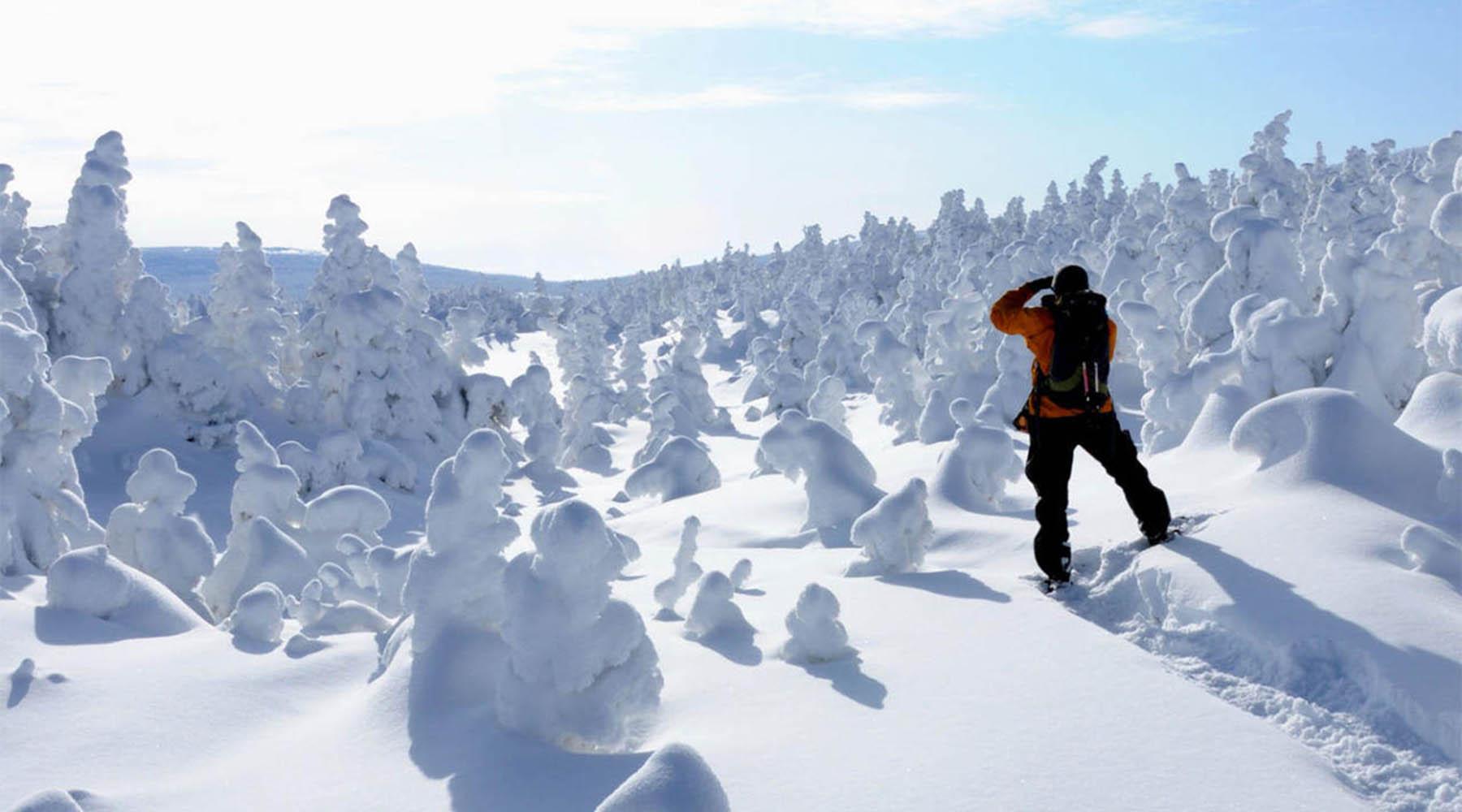 randonner hiver, randonner l'hiver, randonnée, randonné, hiver, hivernal, hivernale, chinook voyage, voyage d'aventure, Monts-Valin