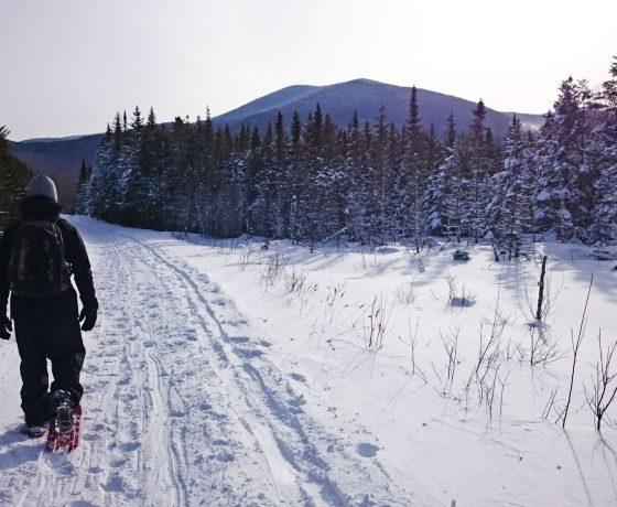tour mont gosford - randonnée raquette - voyage randonnée - randonnée hivernale - voyage d'aventure - gosford en raquette