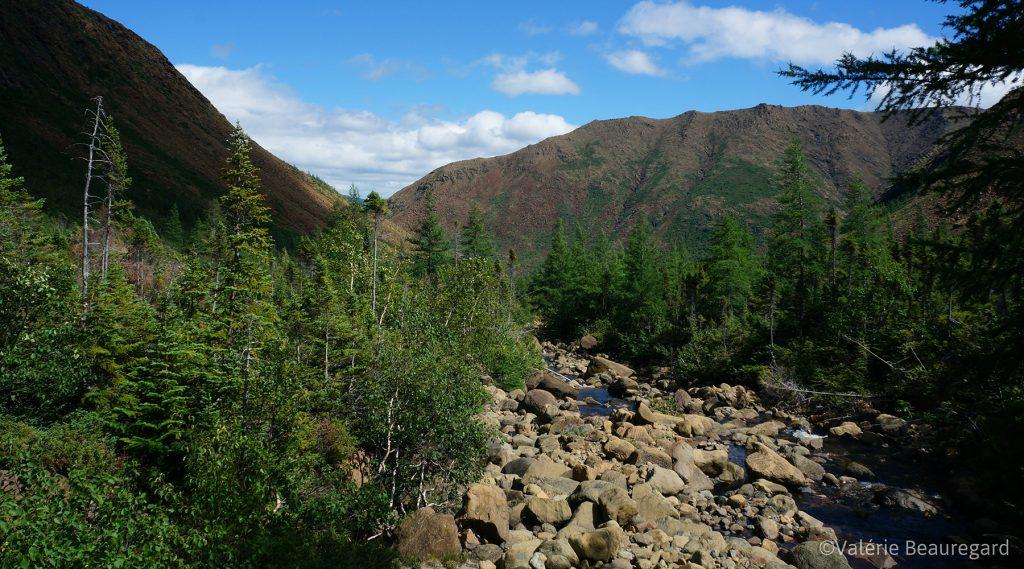 chic-chocs en randonnée - détour nature - rando québec