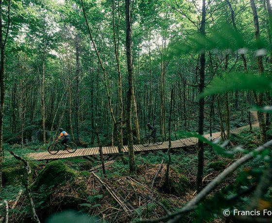 vélo de montagne - vallée bras du nord - detour nature - francis fontaine
