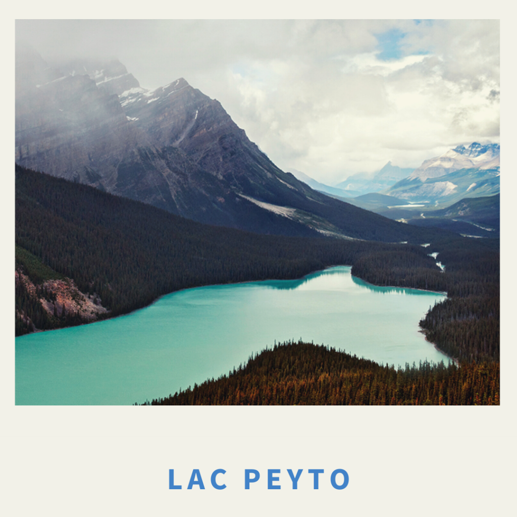 lac peyto - chinook aventure - randonnée - rocheuses canadiennes